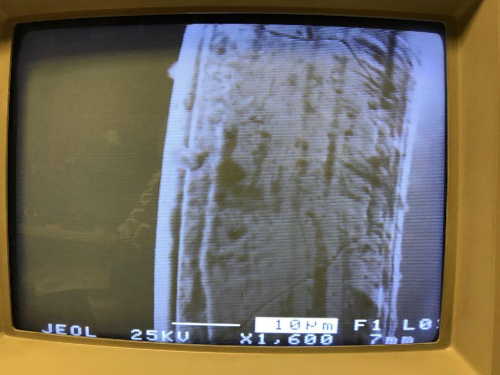Tungsten Bulb Filament